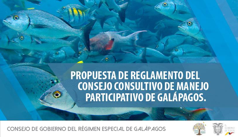 CGREG-informa-40-1